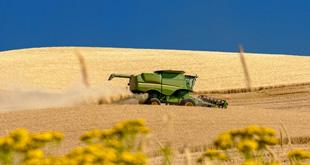 Consulenza imprese agricole