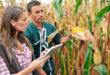 agricoltura-ricambio-generazionale