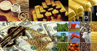 La catena alimentare dell'economia agricola