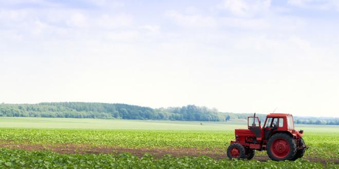 Sardegna subito domande per primo insediamento for Subito it molise attrezzature agricole