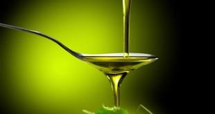 florida-olive-oil-2