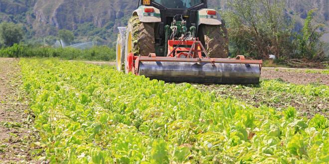 Abruzzo: 35 milioni per le produzioni integrate