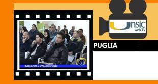 PUGLIA Appello