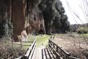 Parco archeologico - particolare