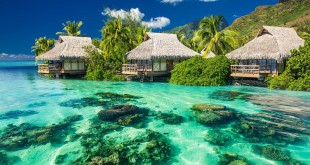 Beautiful above and underwater coral landscape of a tropical resort