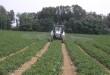 Rivendite agricole e fitofarmaci: successo del convegno bolognese