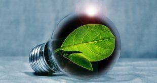 Il futuro dell'economia? È sicuramente verde
