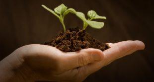 Contributo a fondo perduto per il sostegno delle bioindustrie