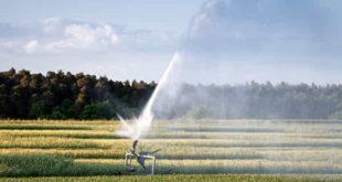 Acqua per l'agricoltura, allarme dell'Unsic sui costi eccessivi