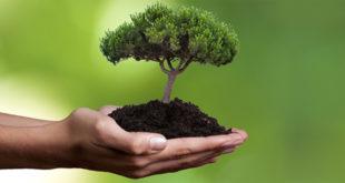 """""""Sostenibilità"""", concetto semplice e complesso"""