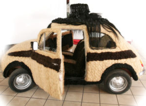 Fiat500 Capellona