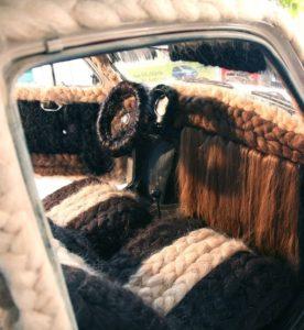 Fiat500 Capellona3