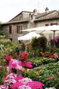 Franciacorta in Fiore (3)